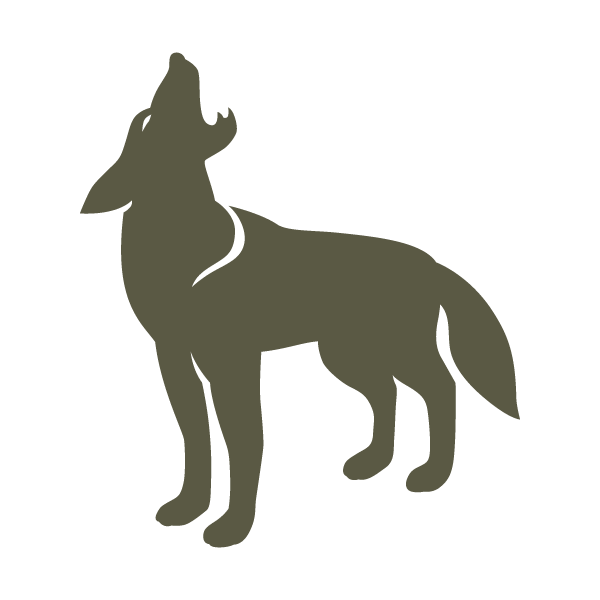 Nkmip Coyote Howling